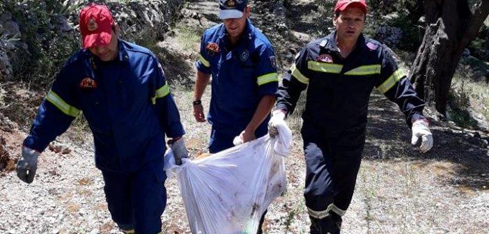 Λευκάδα: Οι πυροσβέστες μας έσωσαν σκύλο που έπεσε σε πηγάδι… (ΔΕΙΤΕ ΦΩΤΟ)