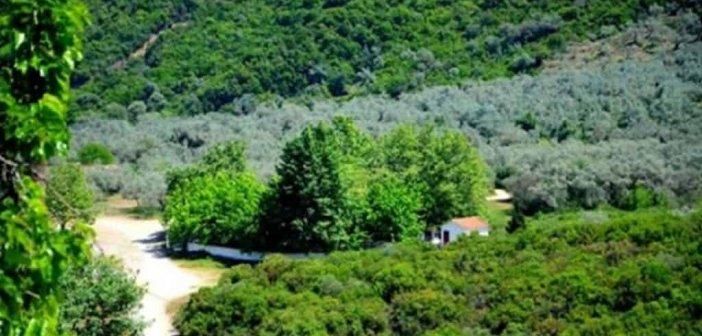 Σπολάιτα Αγρινίου: Πανηγυρίζει το ξωκκλήσι της Αγίας Παρασκευής