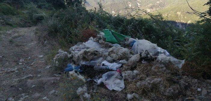 Σε χωματερή μετατράπηκε συγκεκριμένο σημείο στο Άνω Κεράσοβο (ΦΩΤΟ)