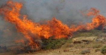 Ευχαριστήρια ανακοίνωση για την αντιμετώπιση της πυρκαγιάς στη θέση «Άγιος Γεώργιος» της Κοινότητας Τρύφου