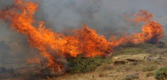 Κατούνα: Έξι στρέμματα γεωργικής έκτασης κάηκαν στη φωτιά