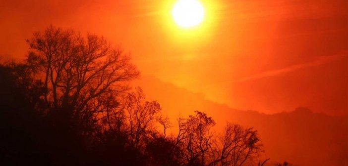 Γαβαλού: Από τις μέγιστες θερμοκρασίες για άλλη μία φορά (ΦΩΤΟ)