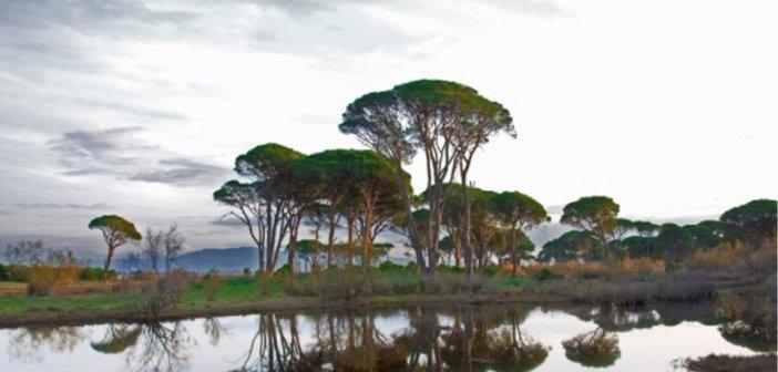 Αχαΐα: Επίθεση σε βάρος δυο οικολόγων στο Πάρκο Στροφυλιάς (ΦΩΤΟ)