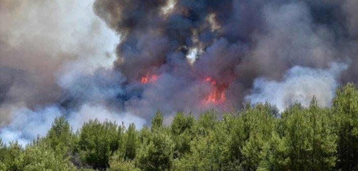 Μεγάλη κινητοποίηση για φωτιά στην Πρέβεζα