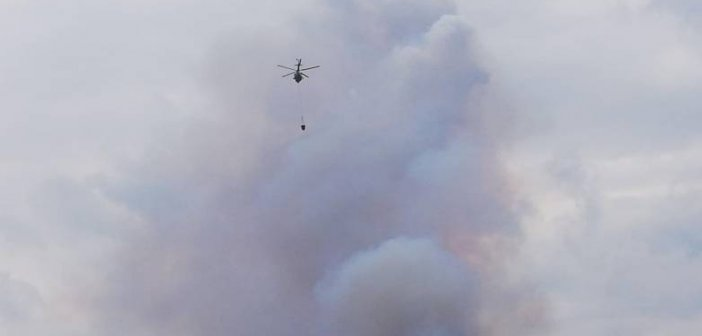 Πάτρα: Εμπρησμό από πρόθεση «δείχνουν» τα στοιχεία για τη μεγάλη πυρκαγιά στην Ανω Καλλιθέα