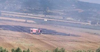 Αμφιλοχία: Κινητοποίηση της Πυροσβεστικής για φωτιά στη θέση Παλιαυλή (ΔΕΙΤΕ ΦΩΤΟ)