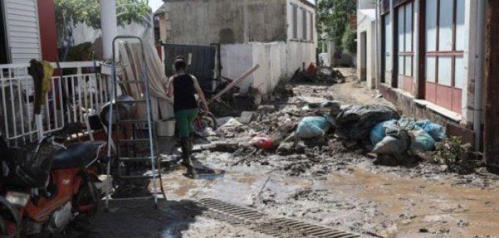 Εύβοια: Οι προθεσμίες των αιτήσεων αποζημίωσης για τους πληγέντες αγρότες