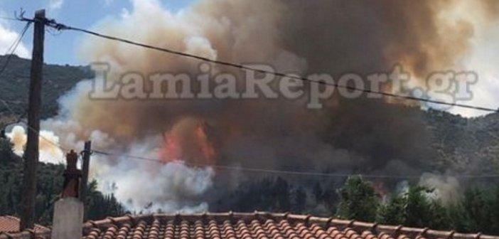 Μια ανάσα από τα πρώτα σπίτια η φωτιά στην Αταλάντη! (VIDEO + ΦΩΤΟ)