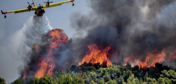 Υψηλός ο κίνδυνος πυρκαγιάς στη Δυτική Ελλάδα την Πέμπτη 27 Αυγούστου 2020