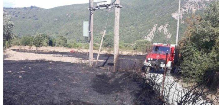 Αμφιλοχία: Φωτιά στη Μαλεσιάδα στη θέση Μοναστηράκια (ΔΕΙΤΕ ΦΩΤΟ)