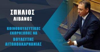 Σπήλιος Λιβανός: Η ολοκλήρωση του πρώτου κοινοβουλευτικού χρόνου από την εκλογική νίκη της Νέας Δημοκρατίας