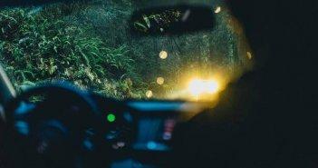 Τραγωδία στην Καρδίτσα: Νεκρός από τσίμπημα σφήκας