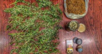 Σύλληψη στο Μεσολόγγι για καλλιέργεια ναρκωτικών