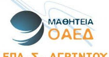 ΕΠΑΣ-ΟΑΕΔ Αγρινίου: Ανάθεση Εργαστηριακών μαθημάτων μόνιμου εκπαιδευτικού- ΤΕ 02.03