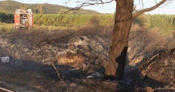 Κινητοποίηση της Πυροσβεστικής για φωτιά στον Δρυμό Βόνιτσας (ΦΩΤΟ)