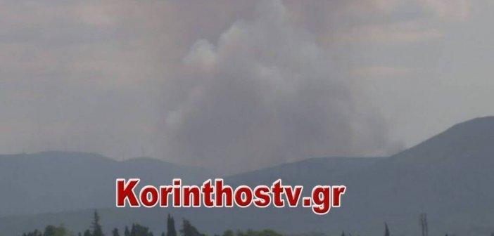 Μεγάλη φωτιά στην Κορινθία – Ενισχύονται οι πυροσβεστικές δυνάμεις
