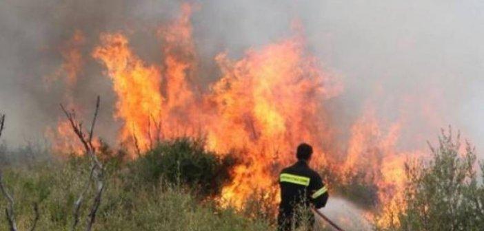Δασική πυρκαγιά στο Θέρμο Αιτωλοακαρνανίας