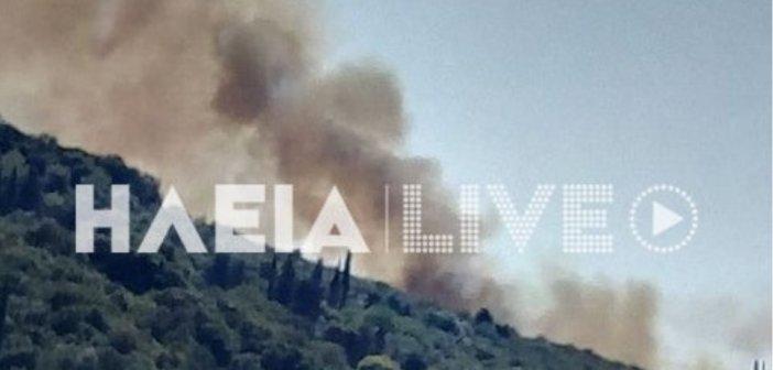 Φωτιά στον Κολοκυθά Ηλείας – Οδηγία για εκκένωση του χωριού Δάφνη