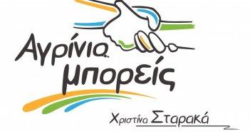 Χριστίνα Σταρακά: «Με ευθύνη της δημοτικής αρχής έχει απαξιωθεί ο θεσμός και ορόλος του δημοτικού συμβουλίου».