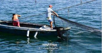 Εντυπωσιάζει το ψάρεμα στο Νταλιάνι στην Πρέβεζα – Καρέ καρέ η διαδικασία