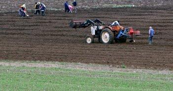ΟΠΕΚΕΠΕ: Σήμερα η πληρωμή της πρώτης δόσης των επιδοτήσεων σε αγρότες
