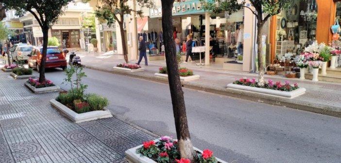 Με λουλούδια στολίστηκε η οδός Σπ. Τσικνιά (ΔΕΙΤΕ ΦΩΤΟ)