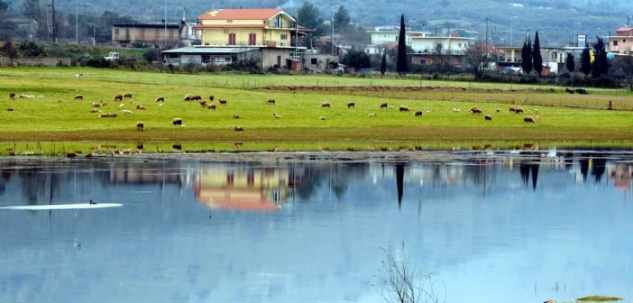Οι ομορφιές της λίμνης Αμβρακίας (ΦΩΤΟ)