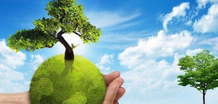 """Κατασκεύη """"Πράσινων Σημείων"""" στον Δήμο Αγρινίου"""