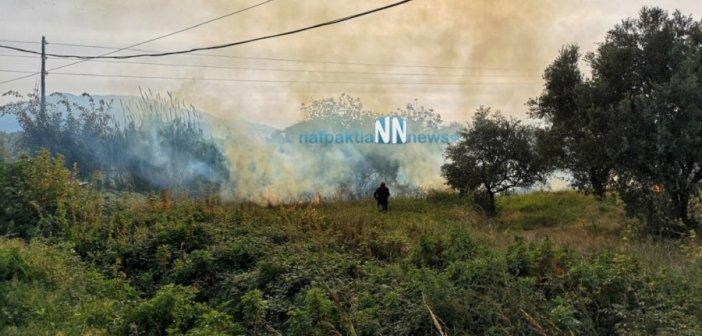 Πυρκαγιά σε χωράφι στο Ξηροπήγαδο Ναυπακτίας (VIDEO)