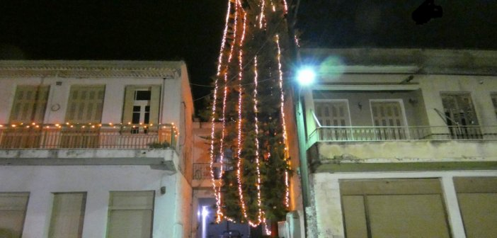 Καλύβια Αγρινίου: Η χριστουγεννιάτικη αραουκάρια του χωριού