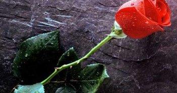 Πένθος στην Αμφιλοχία – Έχασε τη «μάχη» για τη ζωή Αμφιλοχιώτης που είχε διαγνωστεί με κορονοϊό