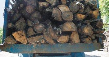 Άραξος: Ιδιώτης έκοψε ξύλα και τα διένειμε σε άπορες οικογένειες
