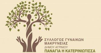 Δωρεά από τον Σύλλογο Γυναικών Μακρυνείας «Παναγία η Κατερινιώτισσα» σε ευπαθείς οικογένειες