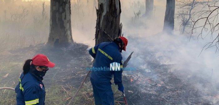 Φωτιά στο Κρυονέρι Ναυπακτίας – Απείλησε σπίτια [Βιντεο]