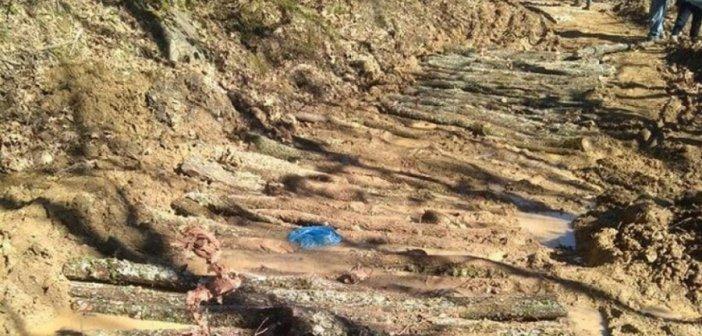 Με κορμούς δέντρων έφτιαξαν πρόσβαση οι κάτοικοι του Κεράσοβου