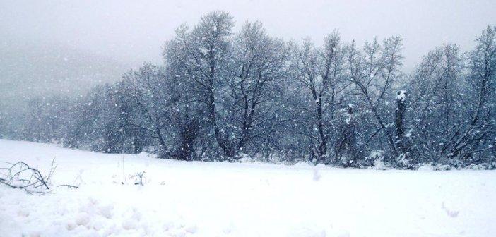 """Καιρός: Η κακοκαιρία """"Μήδεια"""" βάζει «στον πάγο» όλη τη χώρα"""