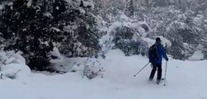 Κακοκαιρία Μήδεια: Ο Νορβηγός πρέσβης κάνει σκι στη χιονισμένη Φιλοθέη