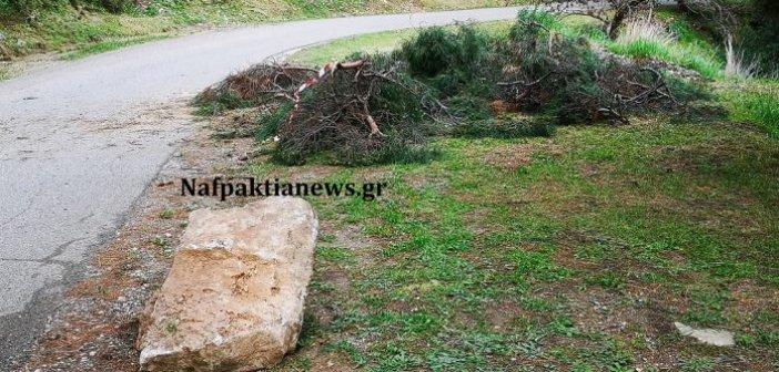 Έπεσαν πεύκο και ογκόλιθος στο κάστρο της Ναυπάκτου – Έκλεισε ο δρόμος για λίγη ώρα (video)