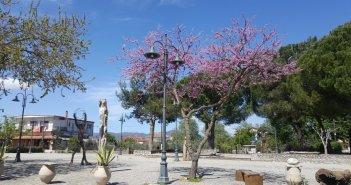 Καλύβια Aγρινίου: Το χωριό μες στα χρώματα και το φως της άνοιξης! (εικόνες)