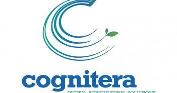 Cognitera: Να σπάσει η αλυσίδα της στασιμότητας