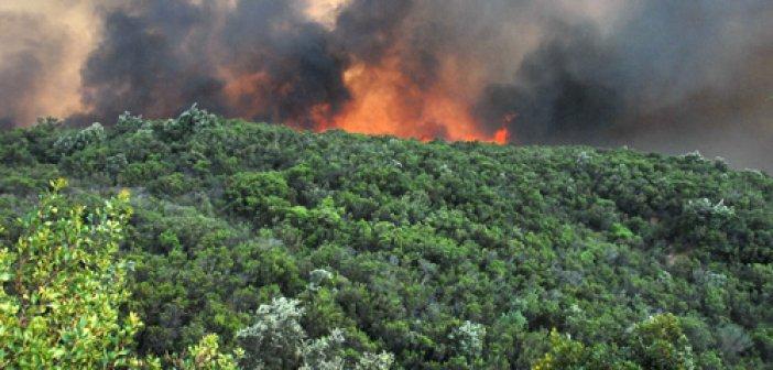 Η Π.Υ. Αιτωλ/νιας για την πρόληψη των δασικών πυρκαγιών