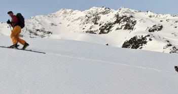 Γάτα χάθηκε και ακολούθησε πεζοπόρους στην κορυφή ελβετικού βουνού – Σε υψόμετρο 3.000 μέτρων (VIDEO)