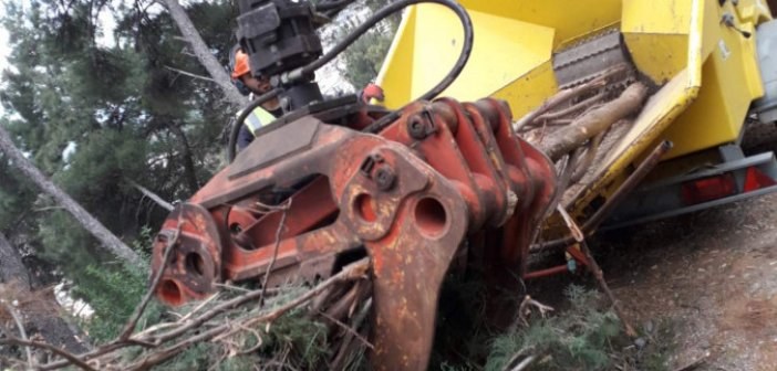 Συνεχίζονται και φέτος ο καθαρισμός και η κοπή δέντρων στο Κάστρο Ναυπάκτου