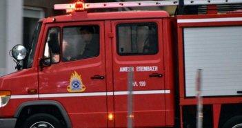 Μυρτιά : Μεγάλη κινητοποίηση της Πυροσβεστικής για πυρκαγιά