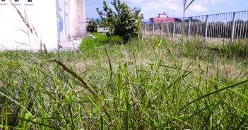 Αγρίνιο – ακαθάριστα οικόπεδα:  «Καμπανάκι» και φέτος