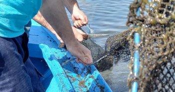 Λιμεναρχείο Μεσολογγίου: Περισυνελλέγησαν και κατασχέθηκαν παράνομα αλιευτικά εργαλεία (ΦΩΤΟ)