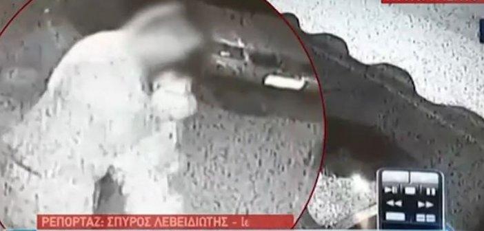 Πάλαιρος: Πήγαν να κλέψουν ψιλικατζίδικο κι έφυγαν με… αρνιά (βίντεο)