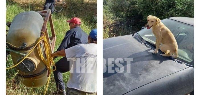 Αχαΐα: Η στιγμή που ο σκύλος του τραυματισμένου αγρότη συγκίνησε τους πάντες (εικόνες)