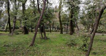 Δοκίμι Αγρινίου: Σάτυρος συνελήφθη μετά από καταγγελία ανηλίκων