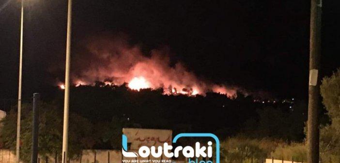 Φωτιά στο Σχίνο Κορινθίας: Πληροφορίες ότι καίγονται σπίτια (pics, video)